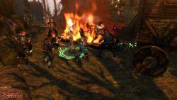 Dungeon Siege 3 - Image 17