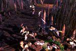 Dungeon Siege 3 - Image 23