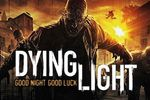 Dying Light - vignette