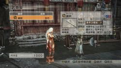 Dynasty Warriors 7 (5)