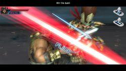 Dynasty Warriors Next (1)