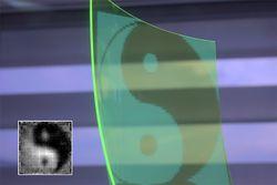 écran flexible transparent caméra
