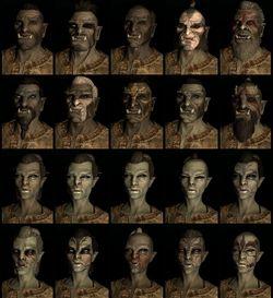 Elder Scrolls 5 skyrim (1)