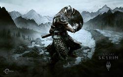 Elder scrolls skyrim (1)