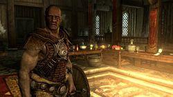 Elder scrolls skyrim (2)