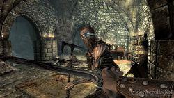 Elder Scrolls Skyrim (5)