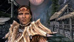 Elder Scrolls Skyrim (9)