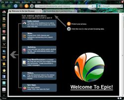 epic browser screen