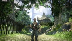 Fable 2   Image 14