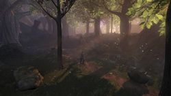 Fable 2   Image 6