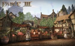 Fable III PC - Image 26