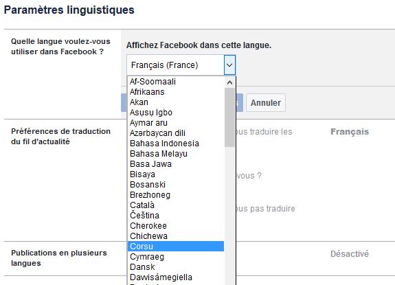 Facebook-corse