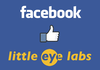 Facebook rachète l'indien Little Eye Labs pour le suivi de données sur Android