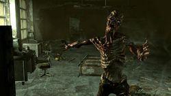 Fallout 3   Image 23