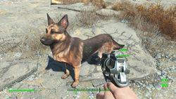 Fallout 4 - 17