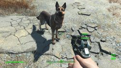 Fallout 4 - 19