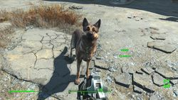 Fallout 4 - 21