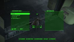 Fallout 4 - 31