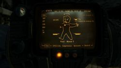 Fallout New Vegas - 21