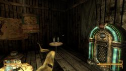Fallout New Vegas - 24
