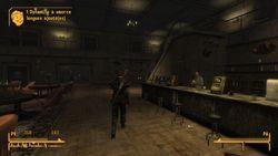 Fallout New Vegas - 30