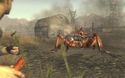 Fallout New Vegas - Image 23