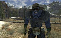 Fallout New Vegas - Image 28