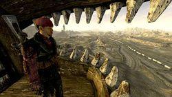 Fallout New Vegas - Image 8