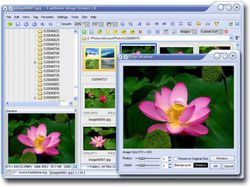 FastStone Image Viewer 2.8 (465x347)