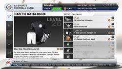 FIFA 13 (6)