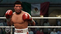 Fight Night Round 4 - Image 10