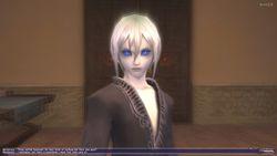 final_fantasy_XI_0000002
