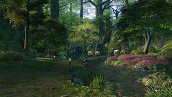 Final Fantasy XIV - 19
