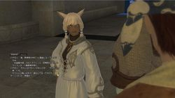 Final Fantasy XIV - Alpha - 4