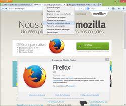 Firefox-24