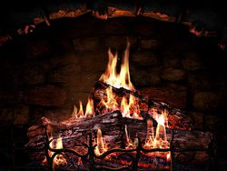 Fireplace screen 1