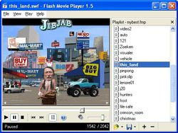 Flash Movie Player1