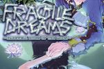Fragile Dreams - pochette