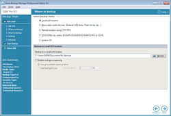 Genie Backup Manager Pro  screen2