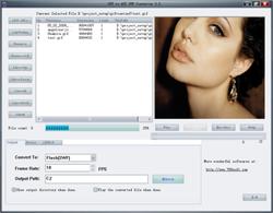 GIF to AVI SWF Converter screen 1