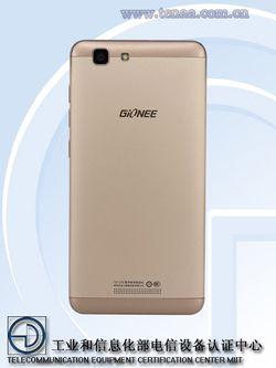 Gionee F105 (2)