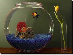 Goldfish Aquarium screen 2