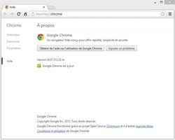 Google-Chrome-24