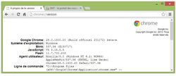 Google-Chrome-28-beta-blink
