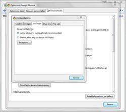 Google-Chrome-5-javascript