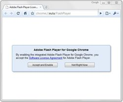 Google-Chrome-Flash