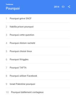 Google-Recherches-2014-pourquoi-France
