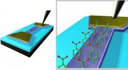graphène capteur cancer