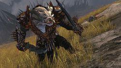 guild-wars-2-pc-080