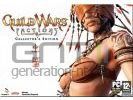 Guild wars factions collector small